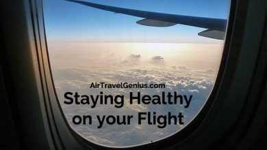 healthy flight